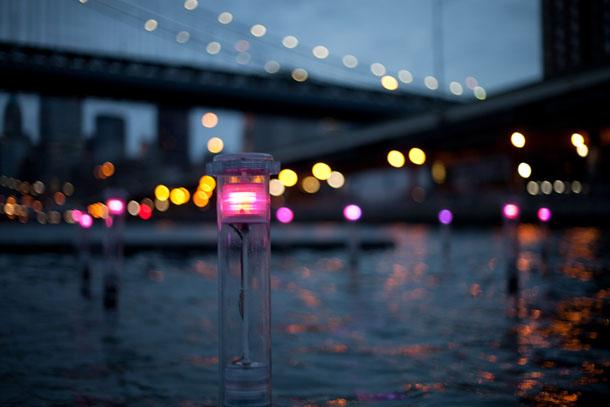 Amphibious-Sensors